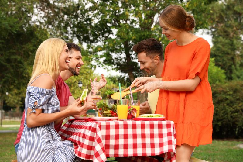 Group of people having picnic at table on summer day royalty free stock photos