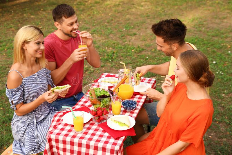 Group of people having picnic at table on summer day royalty free stock image