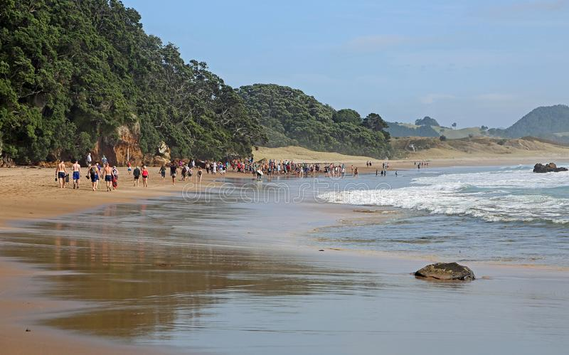Group of people on Hot Water Beach royalty free stock photos