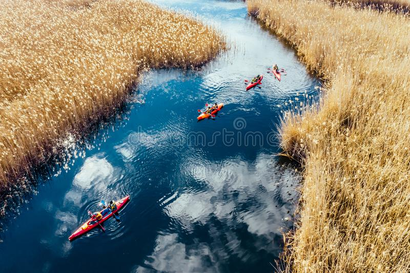 Group of people in kayaks among reeds on the autumn river. royalty free stock photography