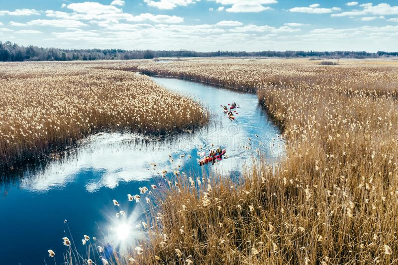 Group of people in kayaks among reeds on the autumn river. View from above stock image