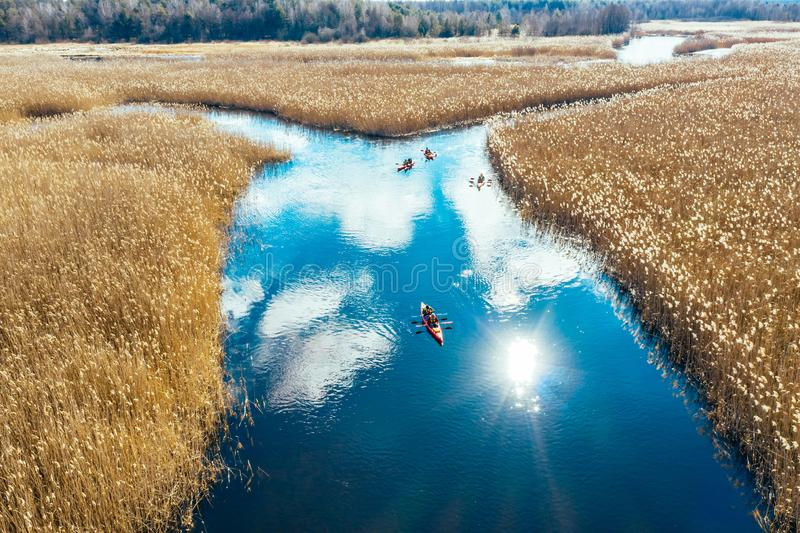 Group of people in kayaks among reeds on the autumn river. View from above stock photos