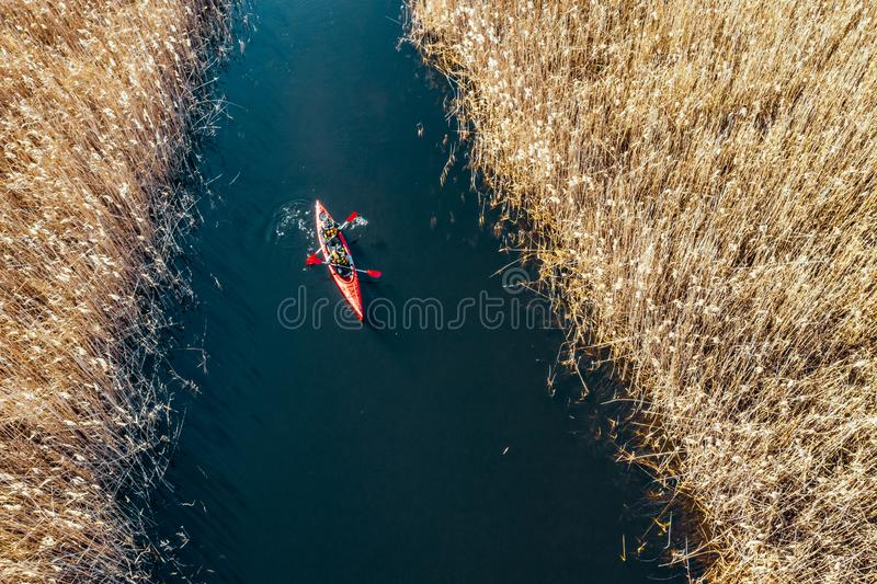 Group of people in kayaks among reeds on the autumn river. royalty free stock image
