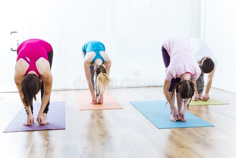 Group of people practicing yoga at home. Uttanasana pose. stock photography