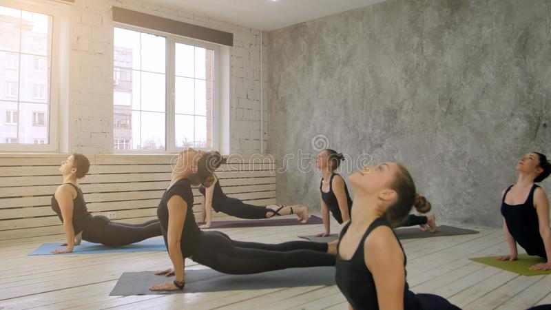 Group of people relaxing and doing yoga, practicing downward dog stock image