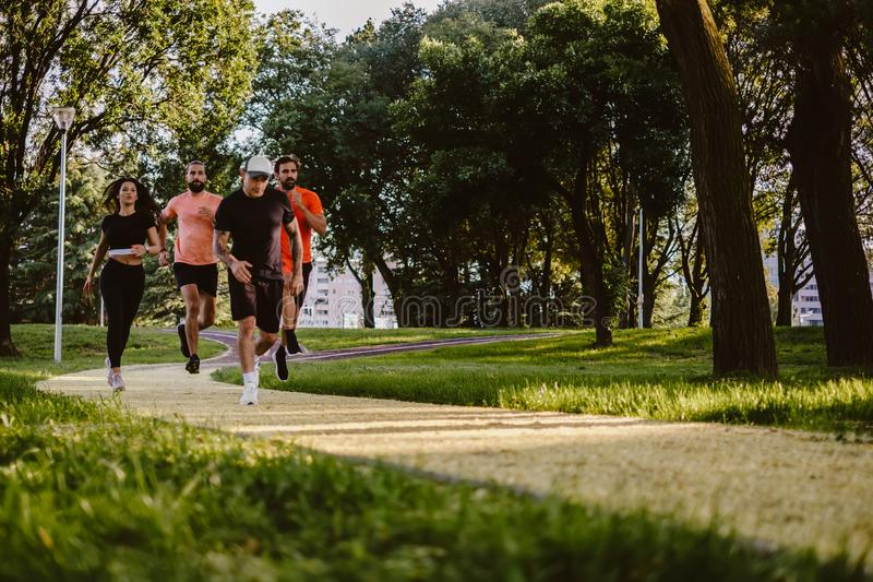 Group of people running in the park royalty free stock photo