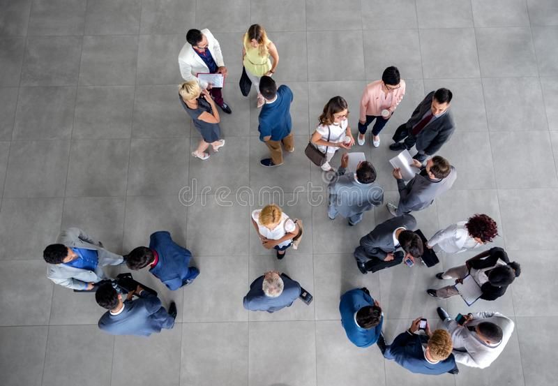 Large group of people standing and talking on business meeting in the company. Group of people standing and talking on business meeting in the company royalty free stock photo