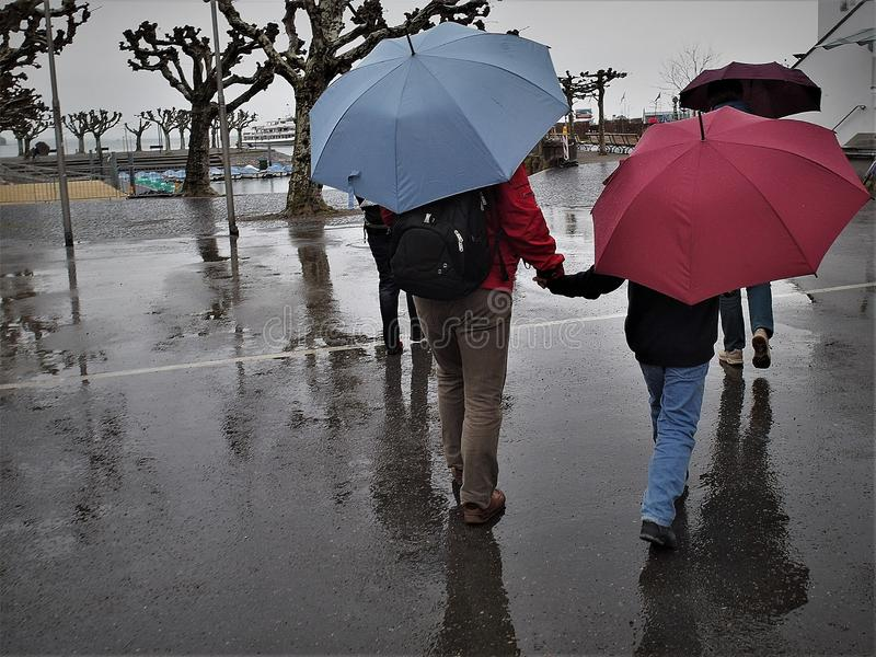 Group of people is walking during rainy day in city of Konstanz, Germany. All have an umbrellas red, purple and blue colors and are heading to Lake Constance stock image
