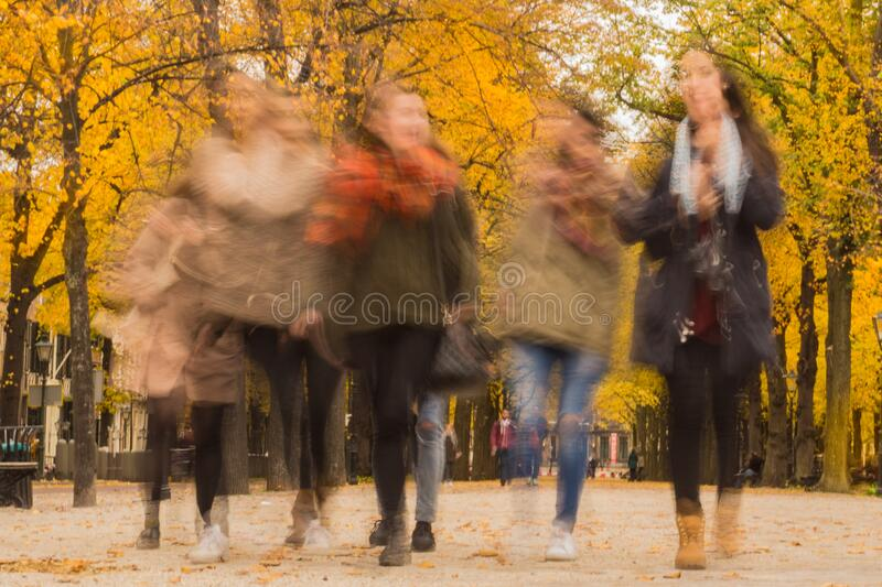 Group Of People Walking Under The Orange Tree Free Public Domain Cc0 Image