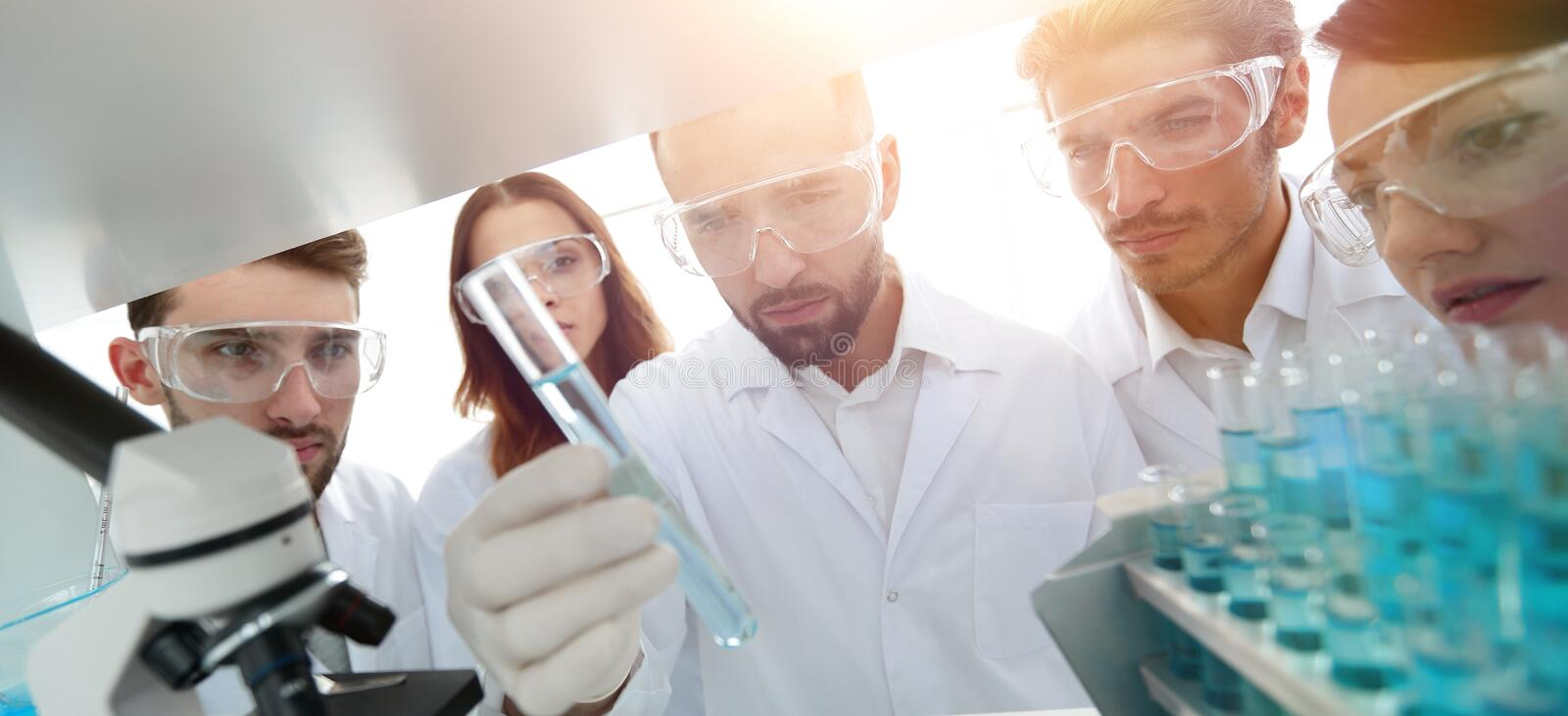 Group of pharmacists working in the laboratory. royalty free stock photo