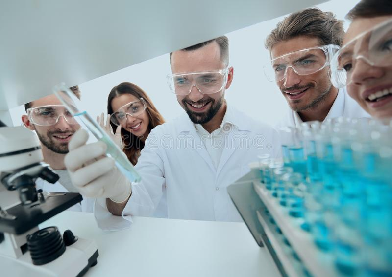 Group of pharmacists working in the laboratory. stock images