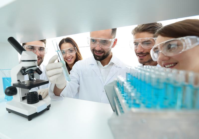 Group of pharmacists working in the laboratory. stock photos
