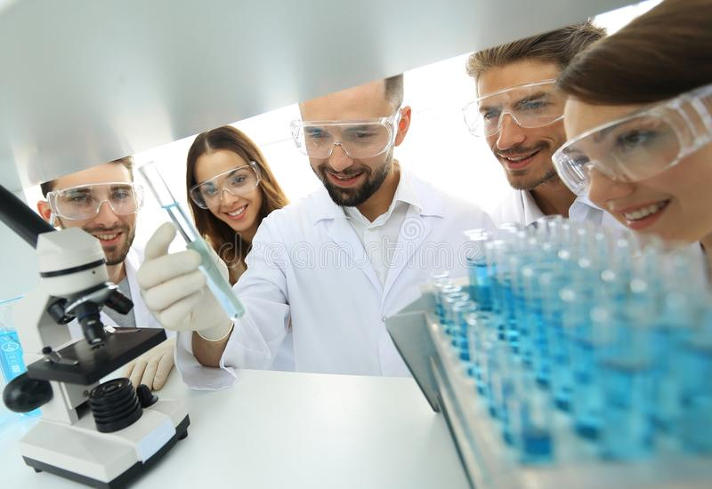 Group of pharmacists working in the laboratory. Photo with copy space royalty free stock image