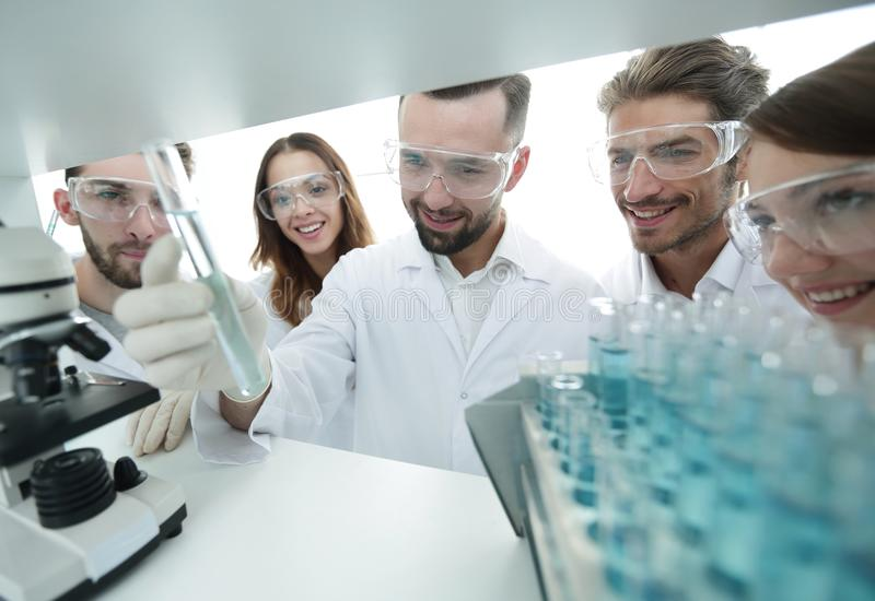 Group of pharmacists working in the laboratory. stock photography