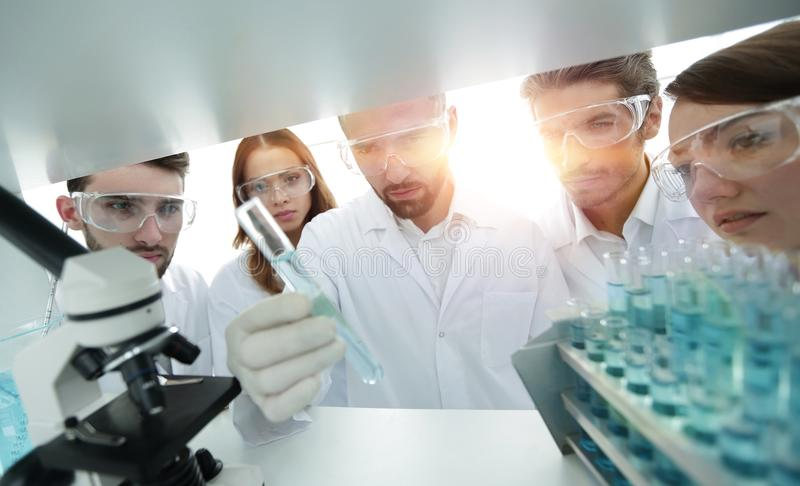 Group of pharmacists working in the laboratory. stock photo