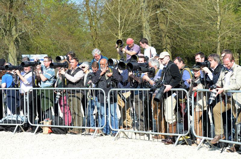 Group of Photographers. Press Photographers at Badminton Horse Trials 2-5-13 royalty free stock images
