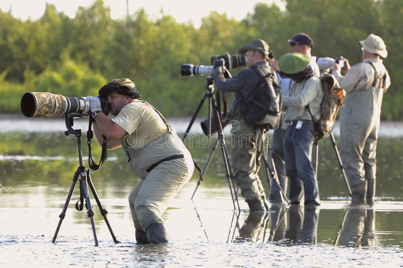 Download Group Of Photographers In Water. Editorial Image - Image: 21140015