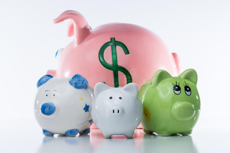 Group of Piggy Banks. A picture of four piggy banks in front of a white background with a dollar sign on the biggest pig in the rear of the group stock photo