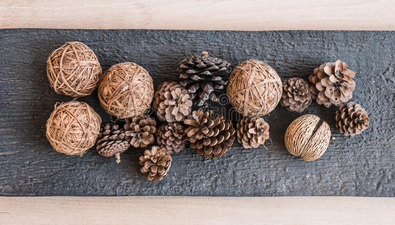 group of pine cone royalty free stock photos