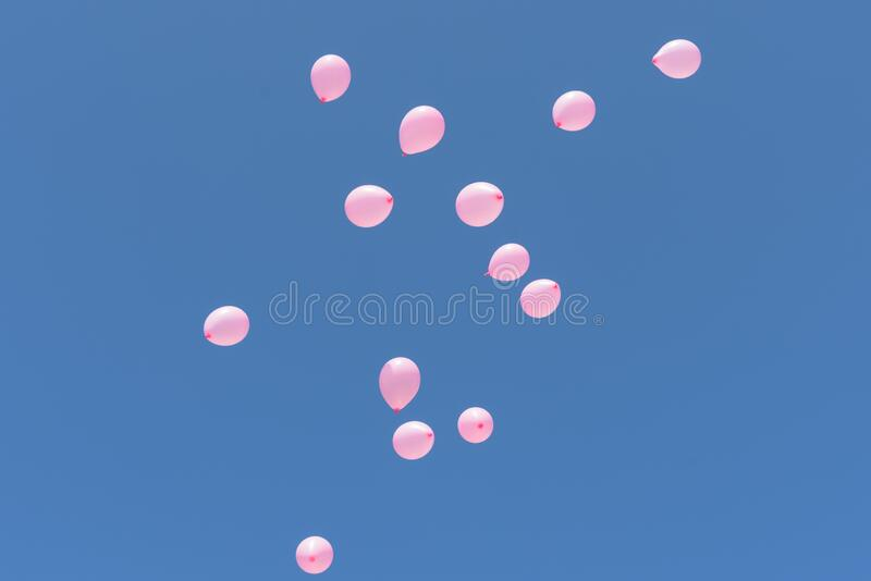 Group of pink balloons floating into a clear blue sky royalty free stock photography