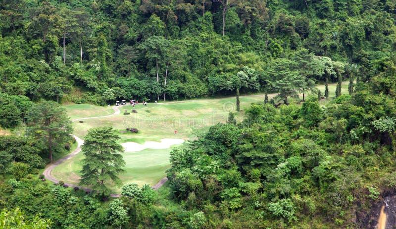 A Group Playing Golf. Stock Photos