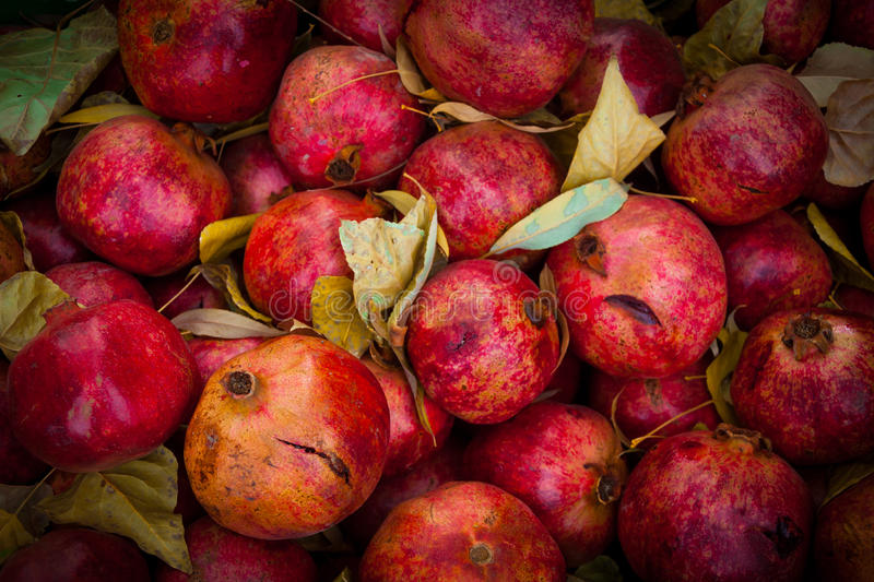 Group of pomegranates. Pomegranate closeup, background royalty free stock images