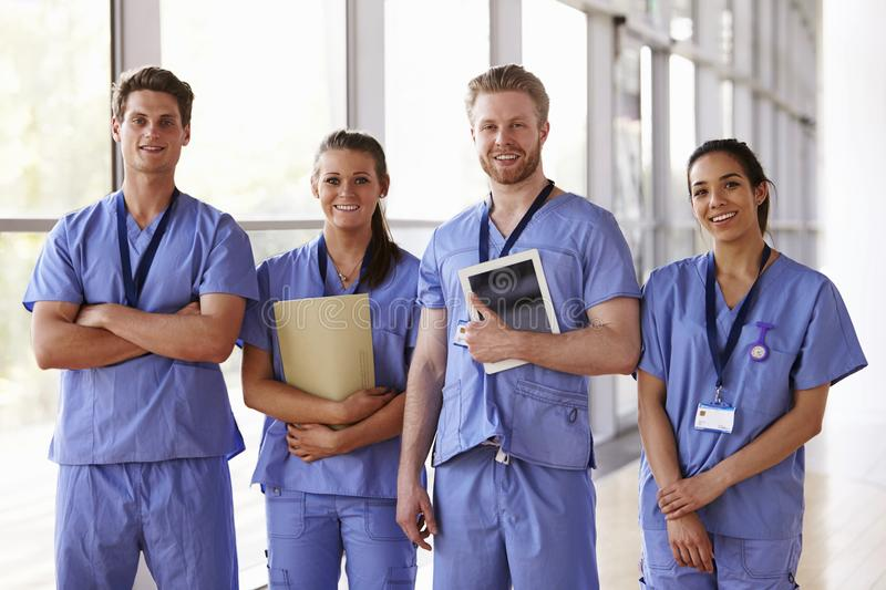 Group portrait of healthcare workers in hospital corridor royalty free stock images