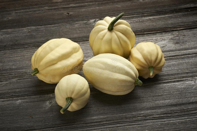 Group Of Pumpkins Royalty Free Stock Photo
