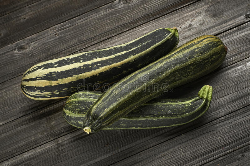 Download Group of pumpkins stock photo. Image of vegetable, delicious - 26812094
