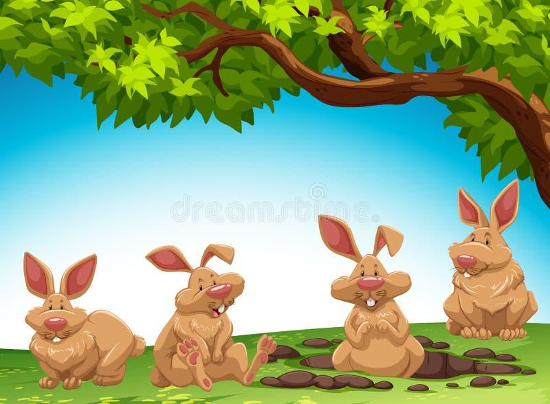 Group of rabbit digging ground. Illustration royalty free illustration