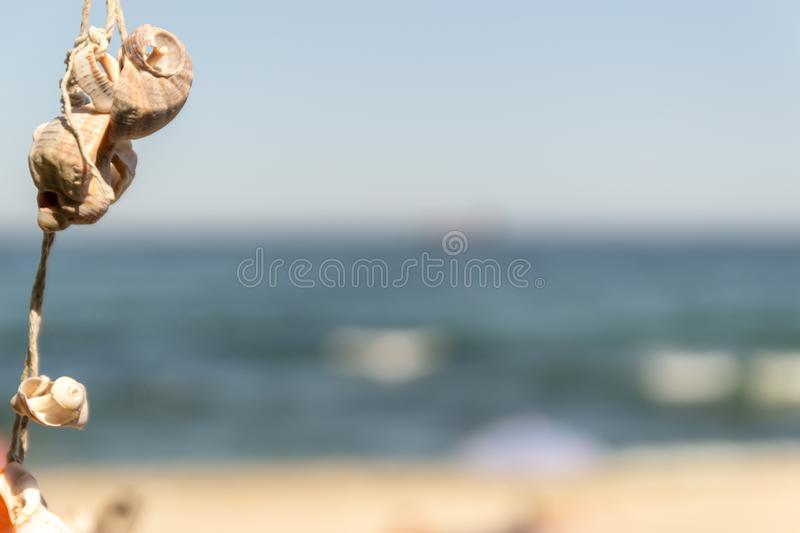 Group of rapan shells linked via rope on a tree as a decoration and sandy beach with tourists in background stock photography