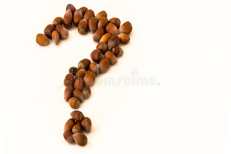 Group of raw hazelnuts in the shape of a question mark. Group of raw hazelnuts laid out in the shape of a question mark on a white background stock photo