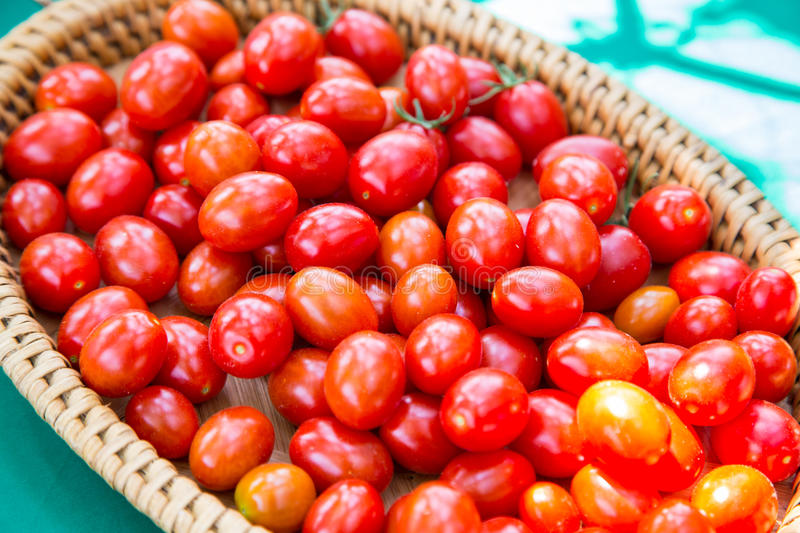 Group of red cherry tomato in basket royalty free stock photography