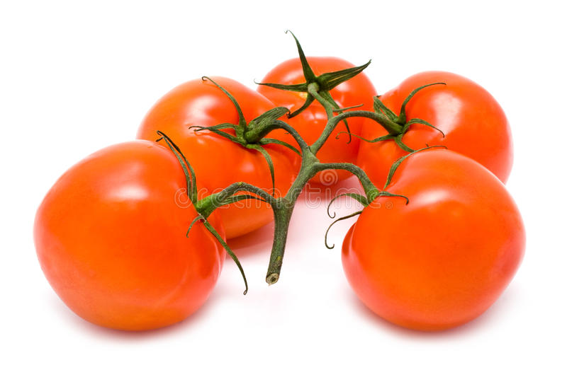 Download Group of red tomatoes stock photo. Image of food, ripe - 12800194