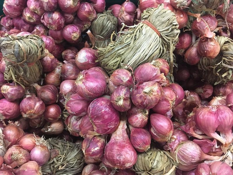 Group of ref shallot in market. Suitable for use as background royalty free stock image