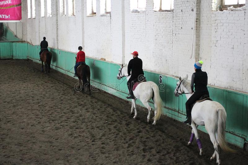 A group of riders on horseback trains in the arena of equestrian sports royalty free stock photo