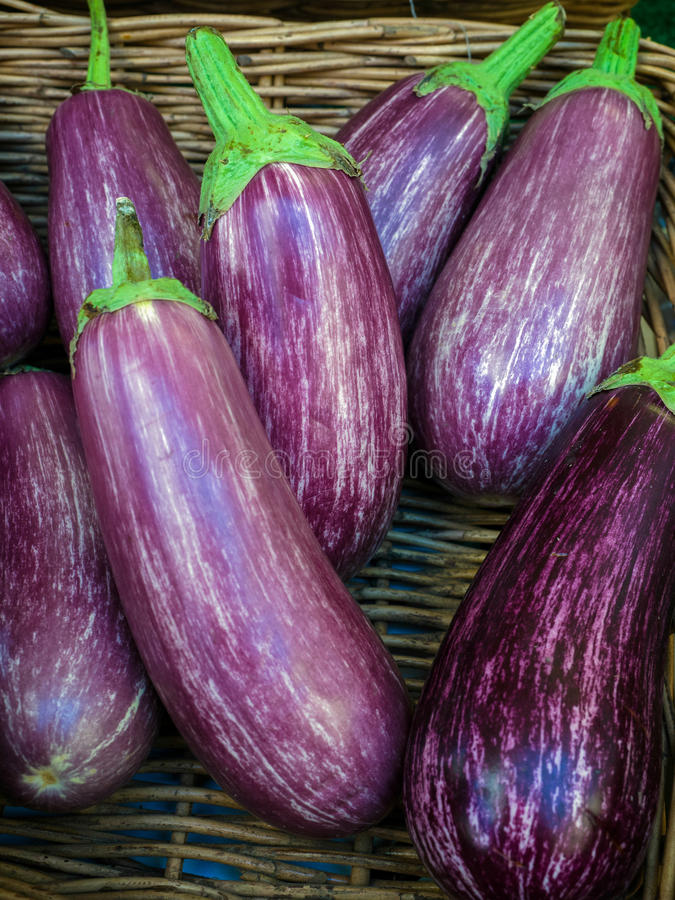 Group of Ripe Aubergines royalty free stock photography