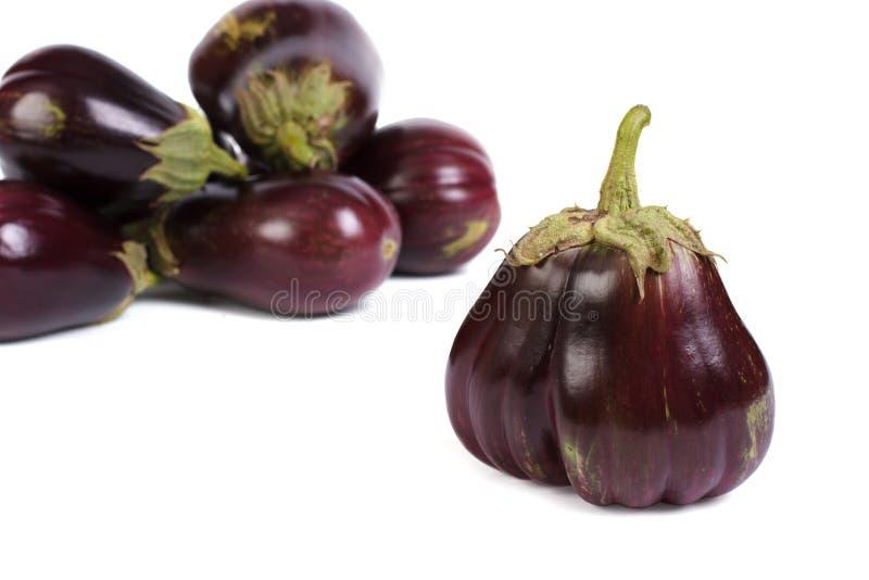 Group ripe round aubergines isolated on white stock photos
