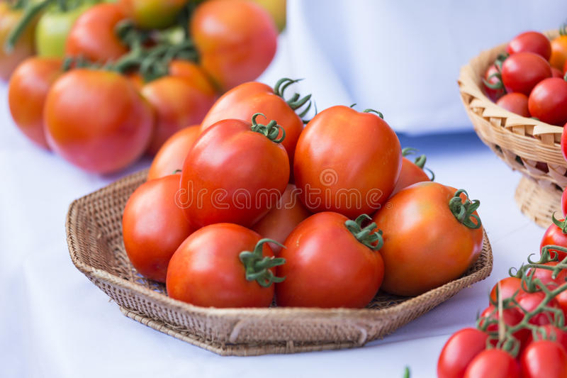 Group of ripe tomato in the basket royalty free stock photo