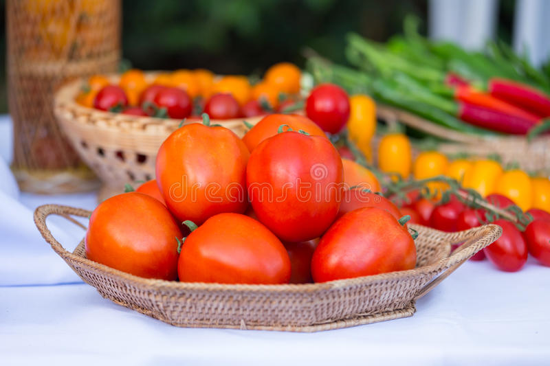 Group of ripe tomato in the basket stock image