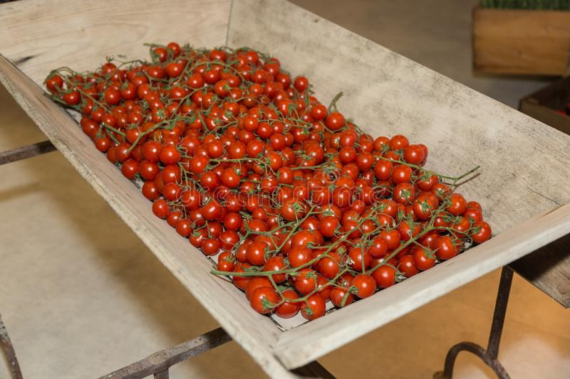 Group of Round Tomatoes in a Large Wooden Container.  stock images