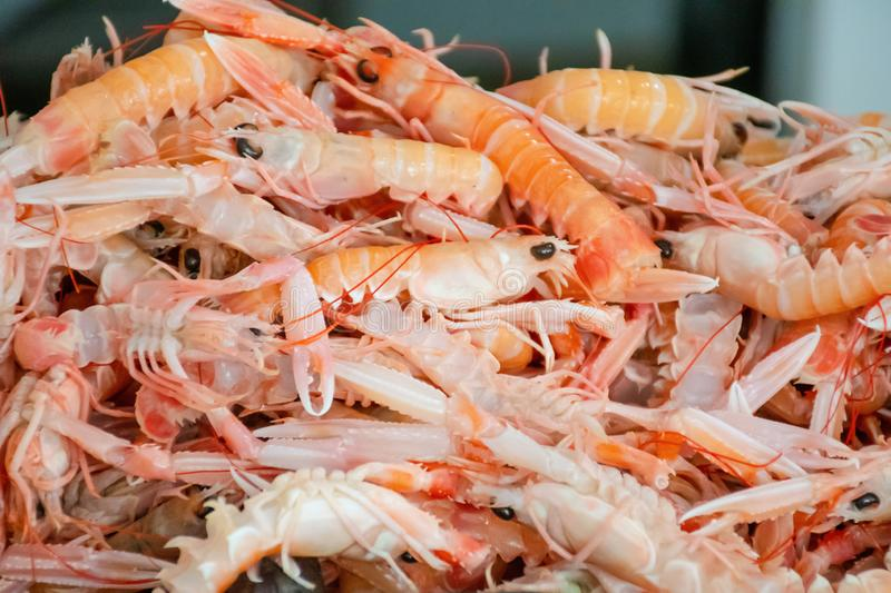 Various fresh seafood and fish displayed on the table for sale in a fish market in Bari, Italy stock photos
