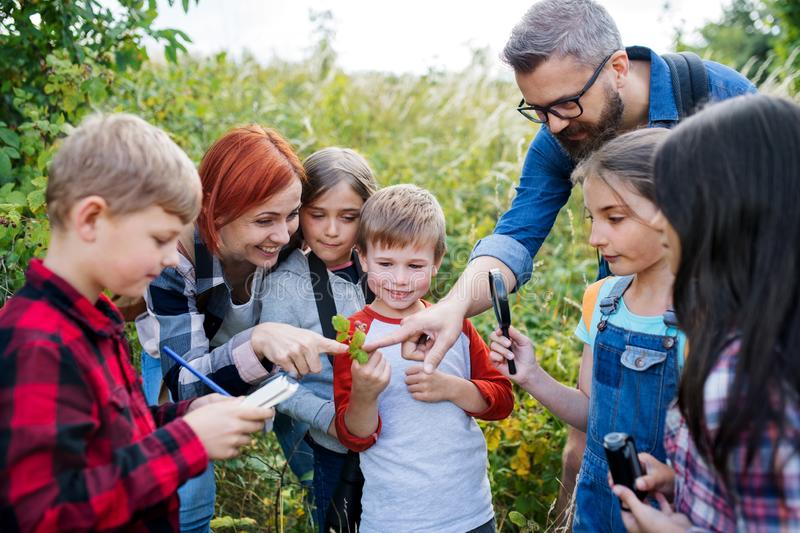 Group of school children with teacher on field trip in nature, learning science. royalty free stock photo