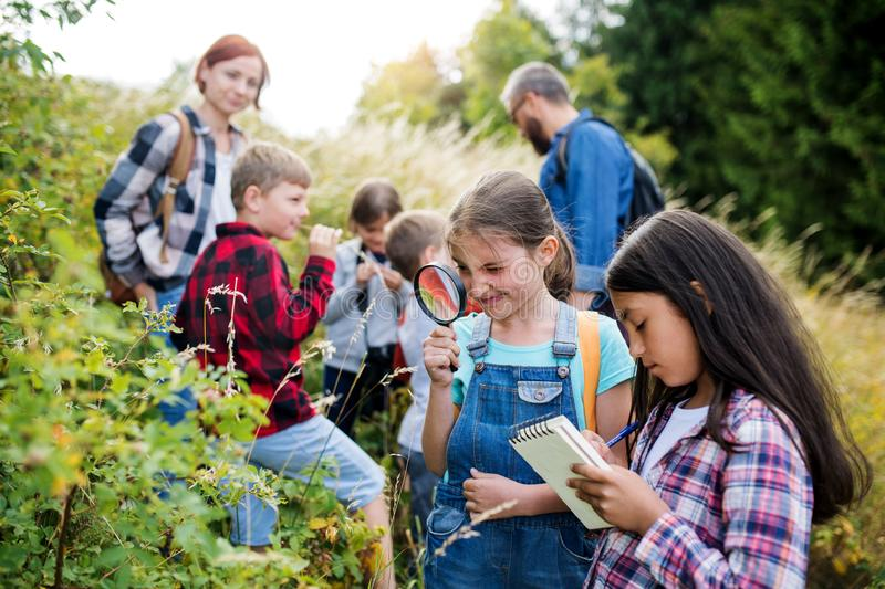 Group of school children with teacher on field trip in nature, learning science. stock photos