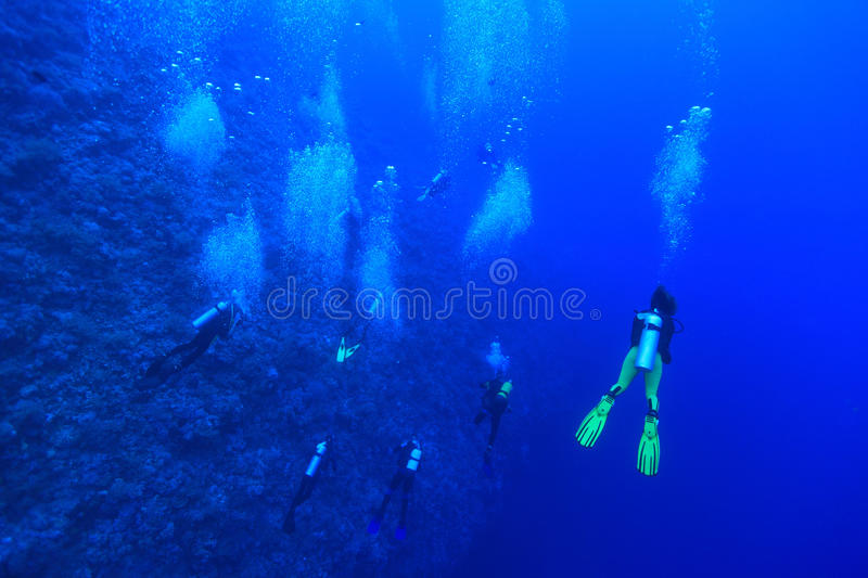 Group of scuba divers stock images