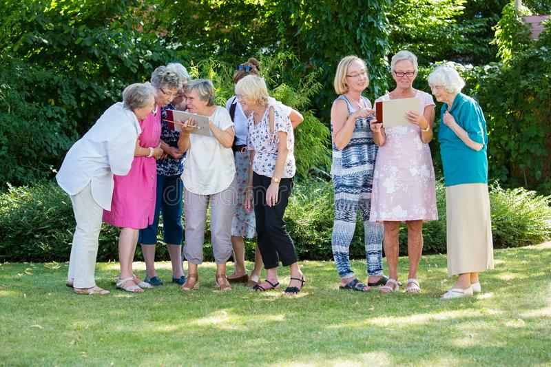 Group of senior women gladly looking at pictures and discussing them, standing in the park after art therapy lesson. royalty free stock photo