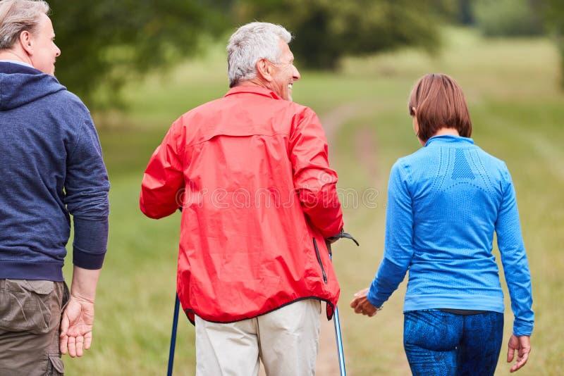 Group of seniors doing Nordic walking royalty free stock photos