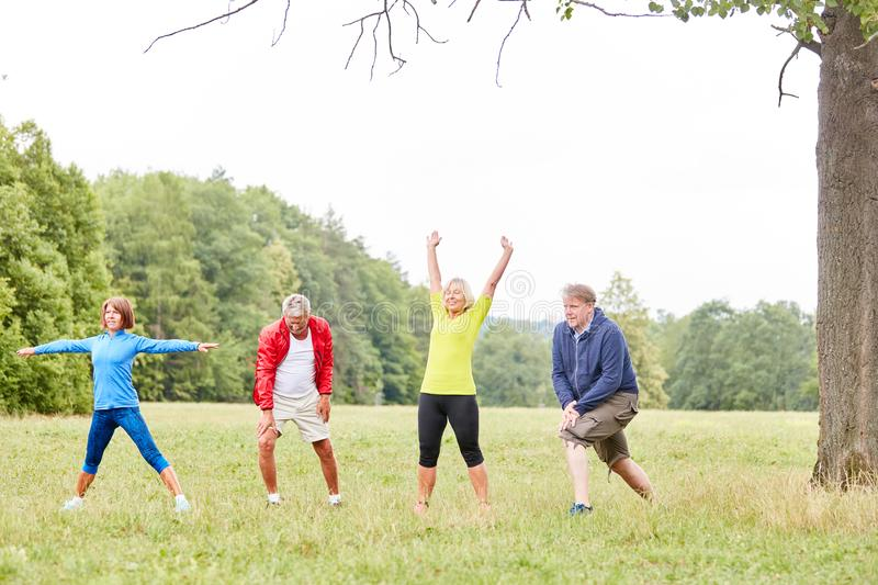 Group of seniors doing stretching royalty free stock images