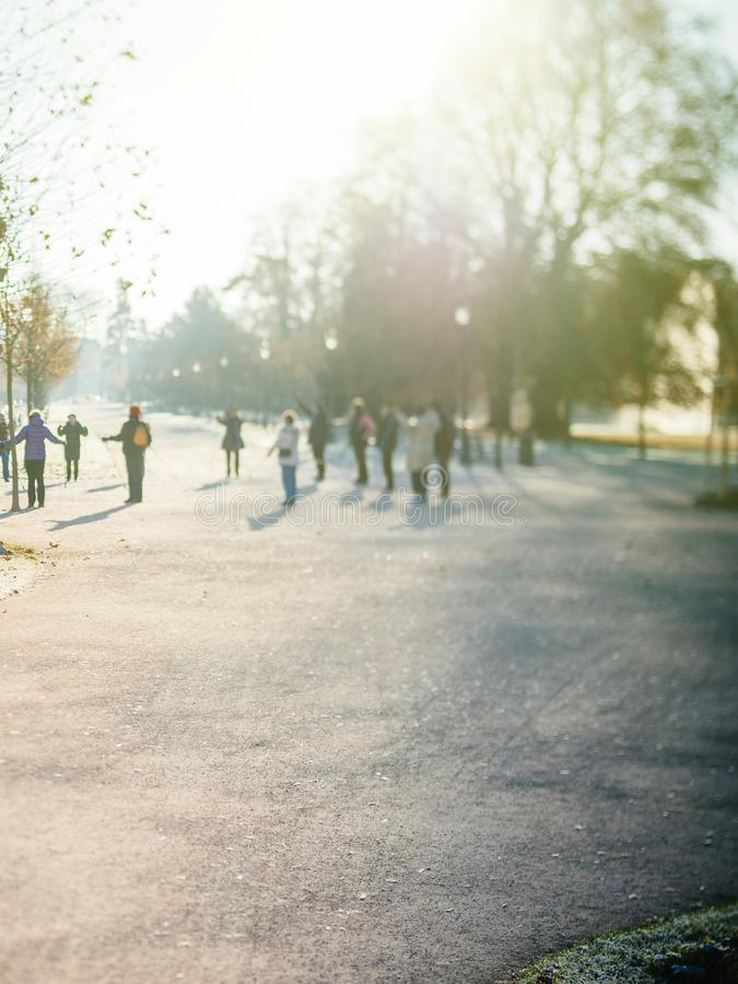 Group of seniors friends workout in public Orangerie park royalty free stock photography