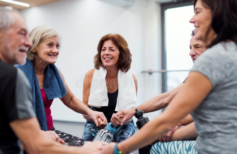 A group of seniors in gym resting after doing exercise on fit balls, holding hands. royalty free stock photography
